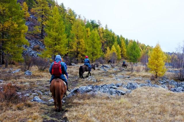 Horse trek in Mongolia IKILOMALLA matkablogi travel blog (5)