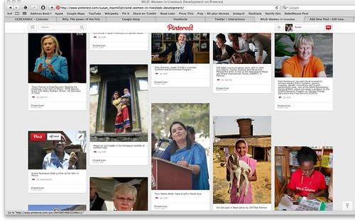 WILD Pinterest screen shot 4