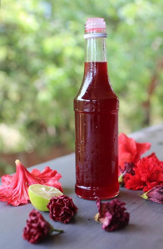 paticheri hibiscus flower syrup (16)