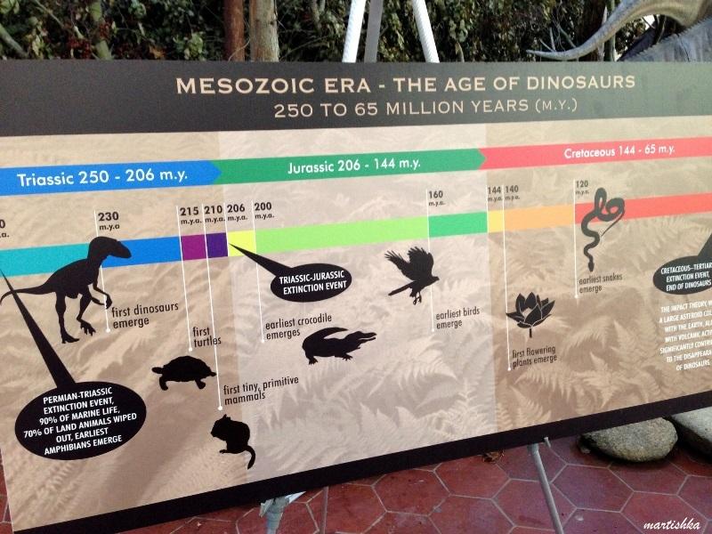 San Francisco Zoo (26)
