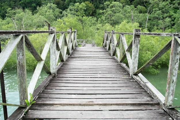 Boardwalk. Bako National Park