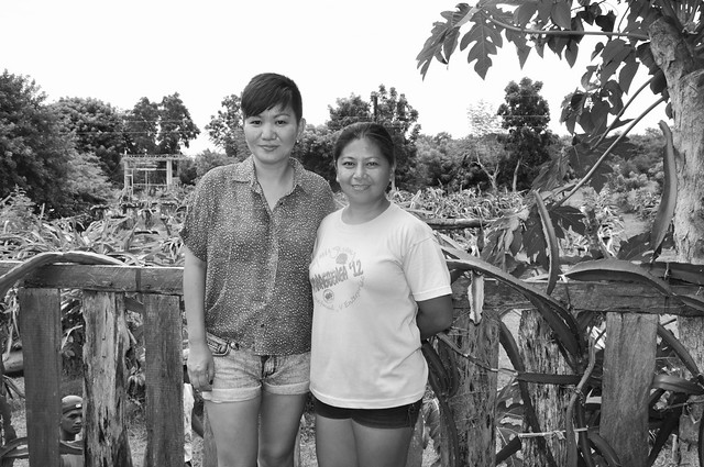 Dragonfruit Farm