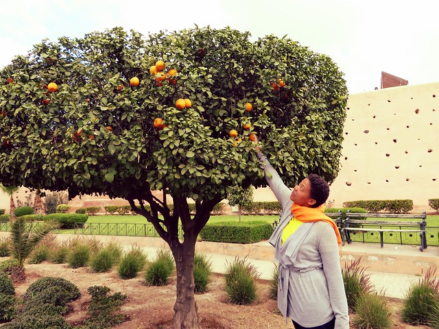 oranges, marrakech, morocco, medina