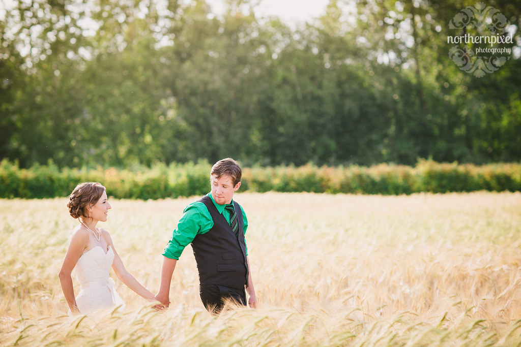 Newlyweds in the Barley Field Farm Wedding BC