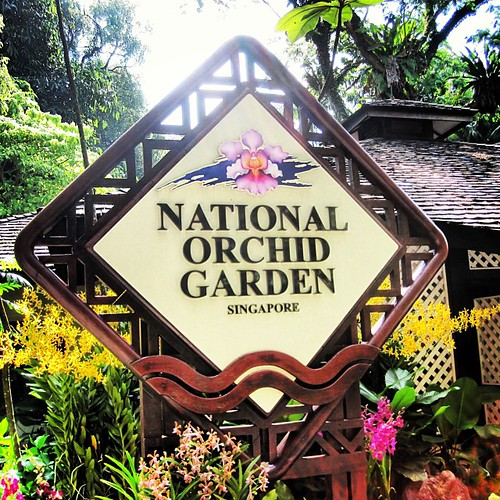 National Orchid Garden is fabulous #singapore botanic gardens by @MySoDotCom