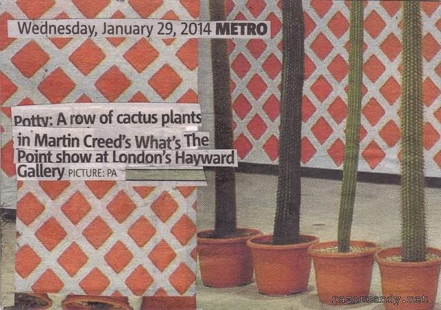 Cactus Plants (2)