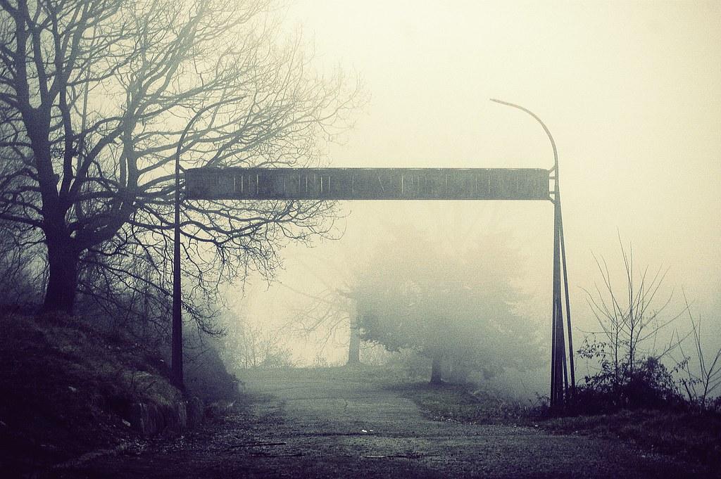 Foto gratis de una carretera con niebla entre los bosques