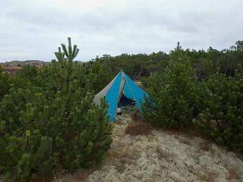 Camp Bunken plantation