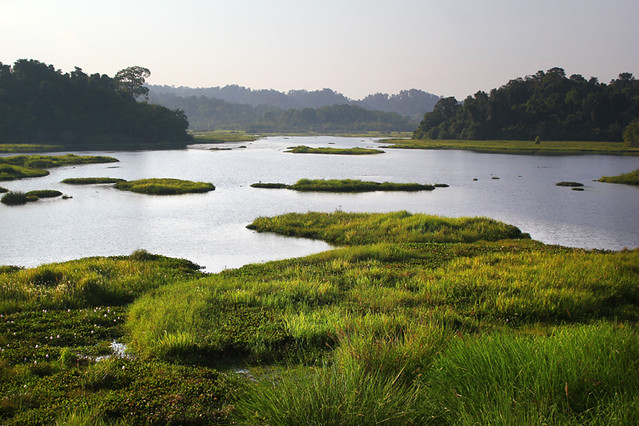 Crocodile Lake - Nam Cat Tien National Park