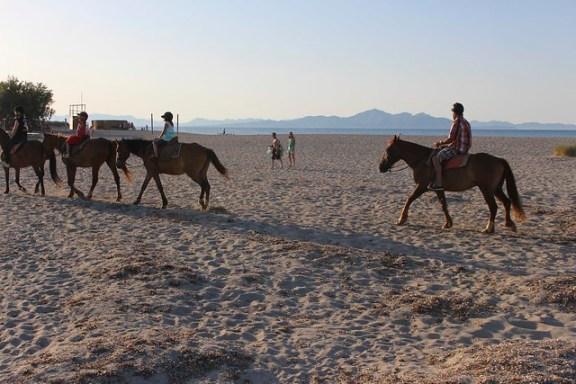 Horse Riding Mallorca