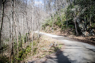 Cataloochee Valley Dirt Road