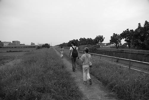 【散步水圳邊4】嘉南大圳善化支線1:螞蟻窩、瓢蟲、西瓜田(9.2ys)