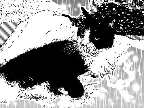 Spotty, manga style!