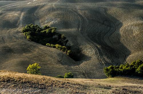 Terra Toscana by Massimo Pelagagge