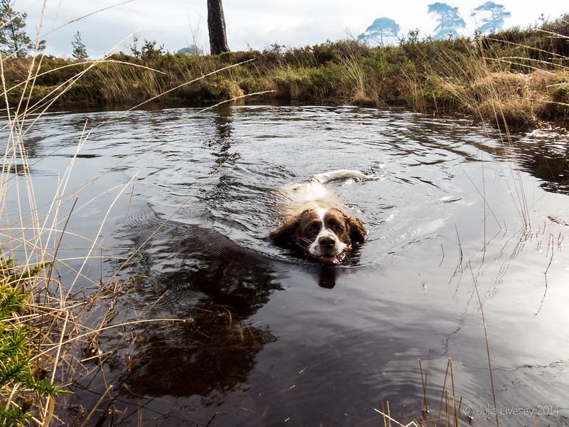Max at Pond #3
