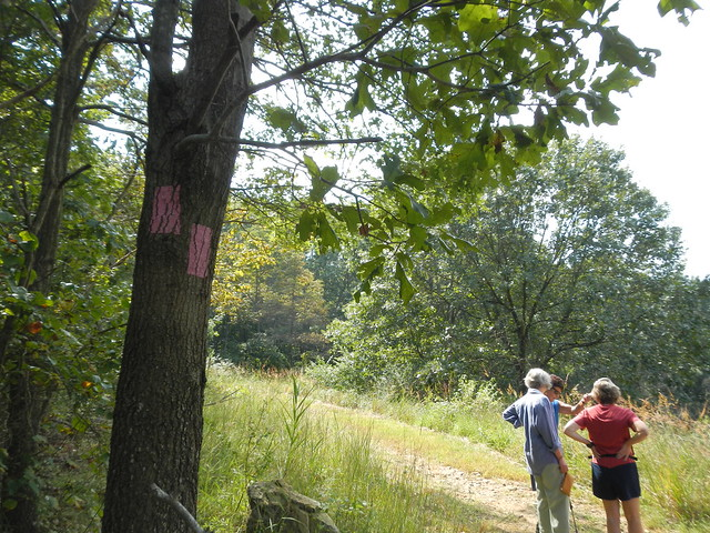 Photos from the 09/08/13 Trail Ramble