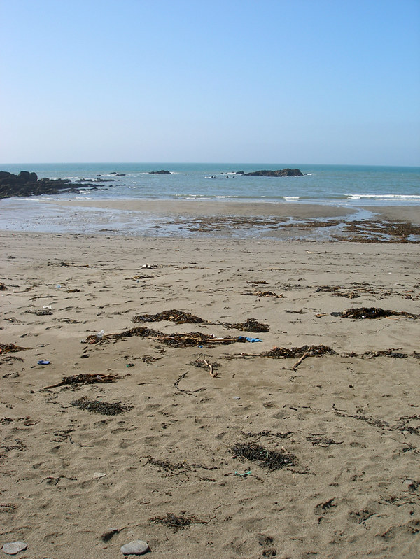 Aymer Cove 1