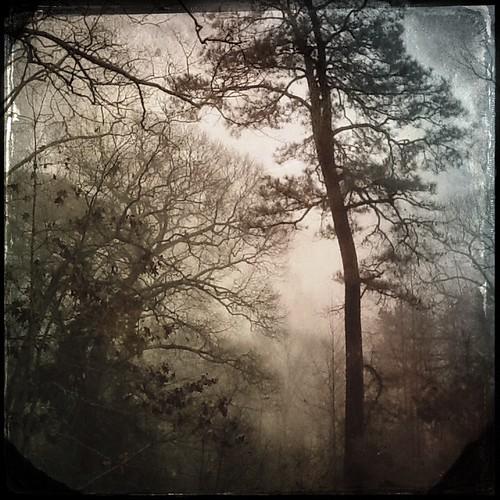 Fog rolling in by sslyb