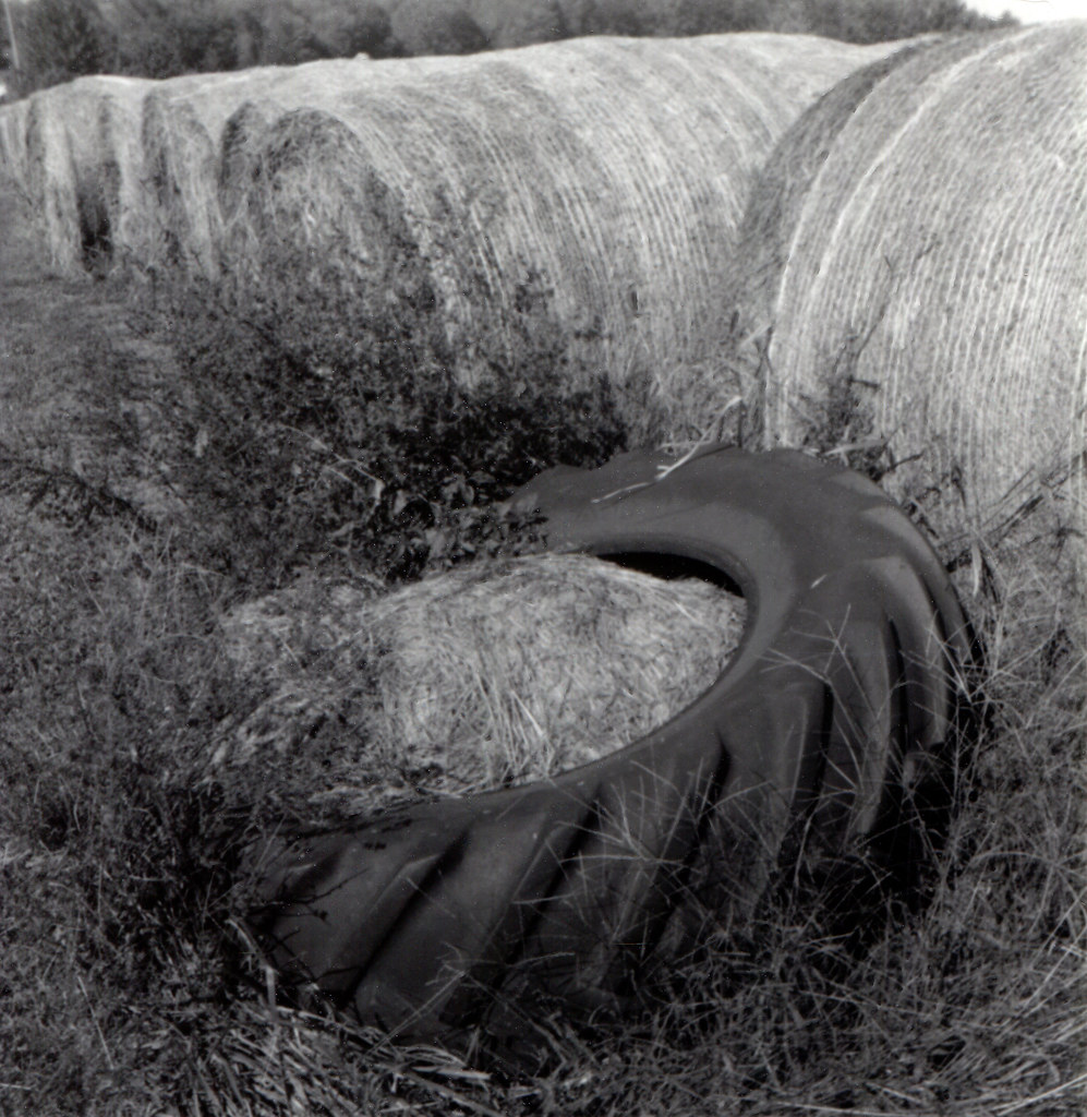 Tire and hay