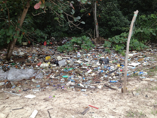35_Trash_on_PulauSerangoon-14nov2013[IvanKwan]