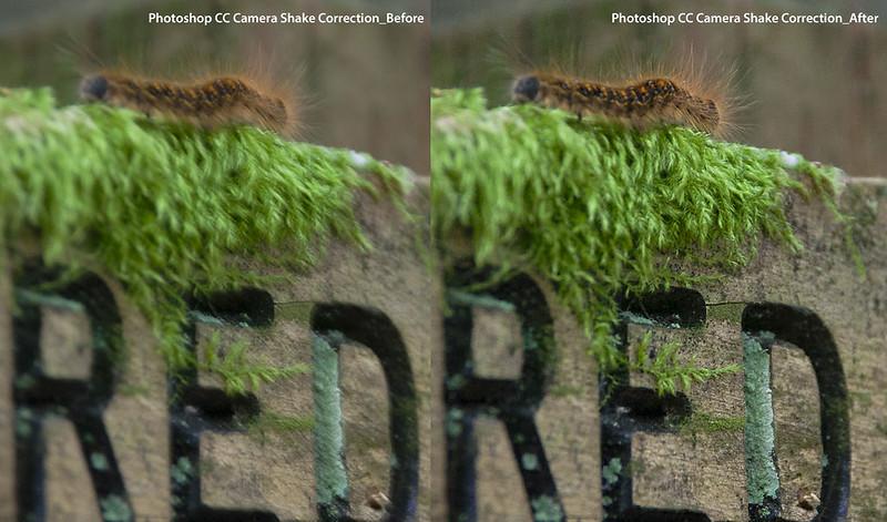 Photoshop CC Camera Shake Reduction