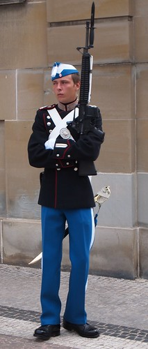 A Royal Life Guard at the Amalienborg Palace