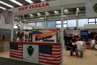 Salone del Cavallo Americano 2014 Reggio Emilia