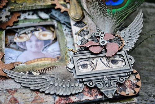 steampunk cover glasses wings