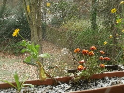 Balkon im Schnee 1