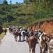 RN7 Fianarantsoa-Tana
