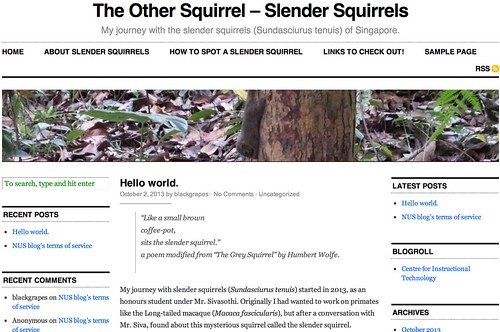 The Other Squirrel - Slender Squirrels