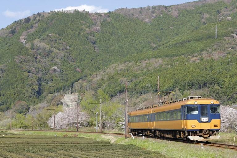 Oigawa Railway Series 16000 (16002F)