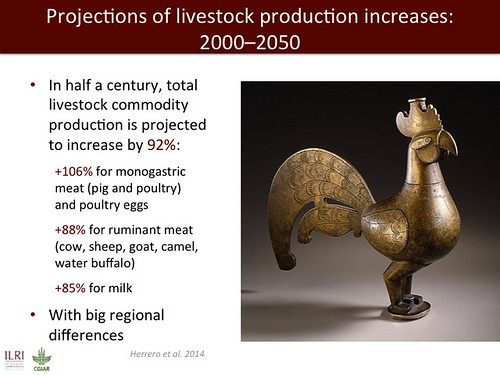 Jimmy Smith on emerging livestock markets: Slide13