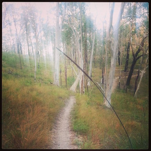 Vegemite trail, Bayview Conservation Park by andrewgillsag