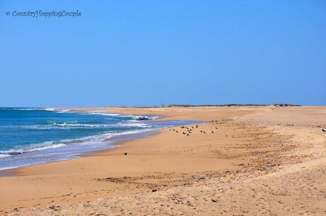 Barreta Island Desert Island in Ria Formosa Faro Portugal