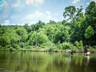 Lake Robinson (7 of 12)