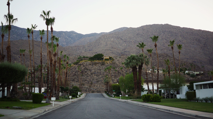 Palm Springs Architecture Tour 3