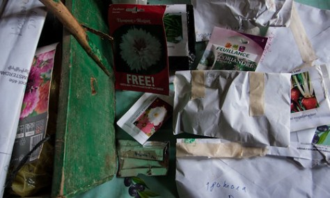 Collections of seeds