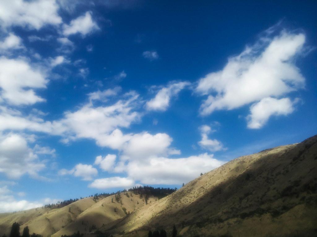 Cashmere hills