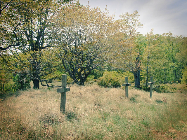 1800's cemetery