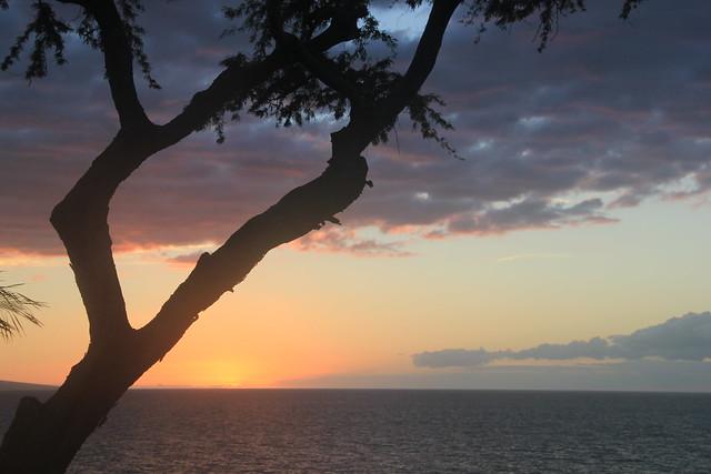 December in Maui