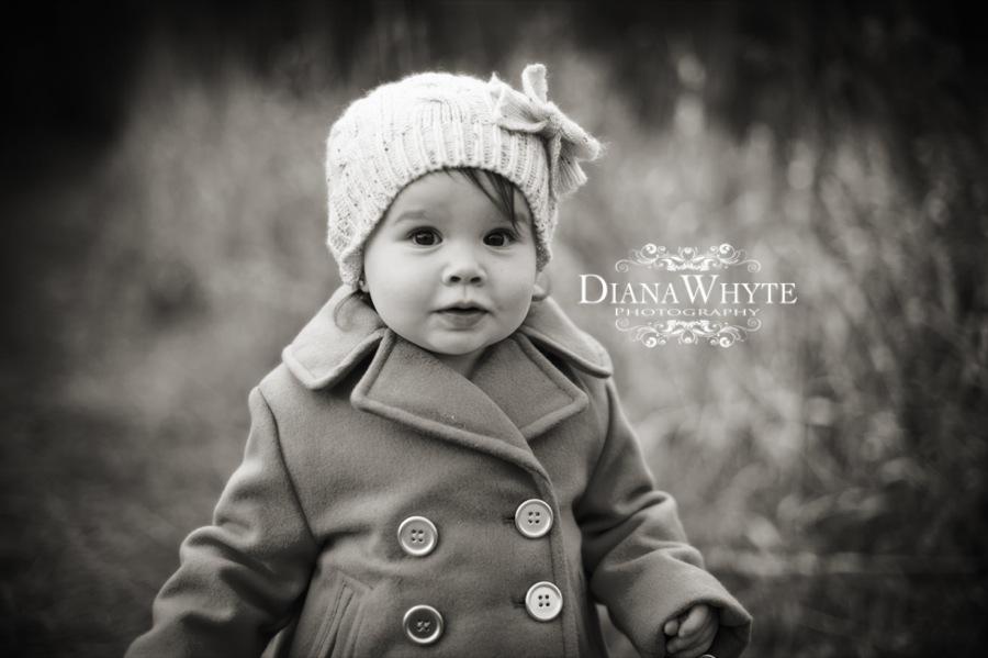DWP_5088pbw