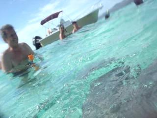 Sting rays in Bora Bora