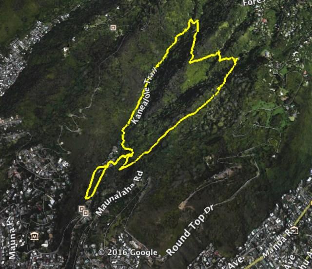 Makiki Valley Google Earth
