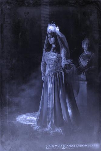 queen of darkness by Bertus van de Vorstenbosch Photography