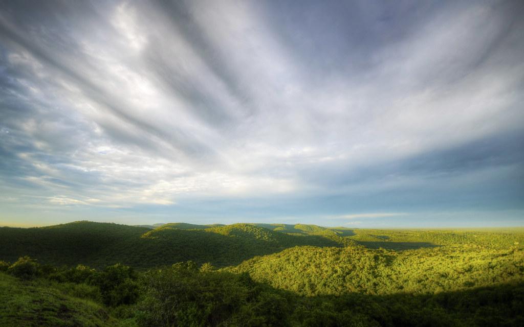 Infinite African Hills