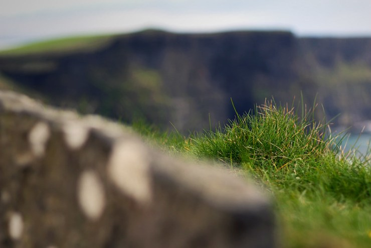 Grass of Moher