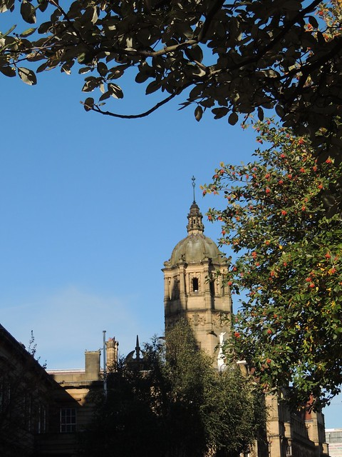 Wakefield Autumn 3