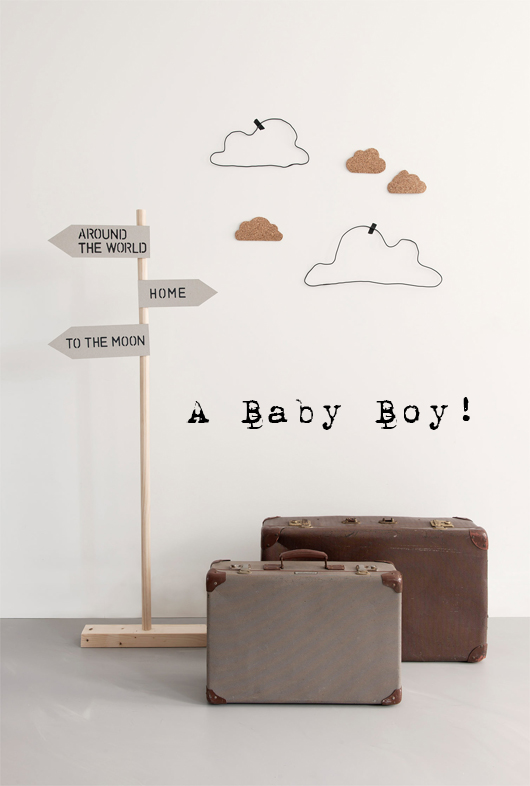 The Results Are In! Boy or Girl?