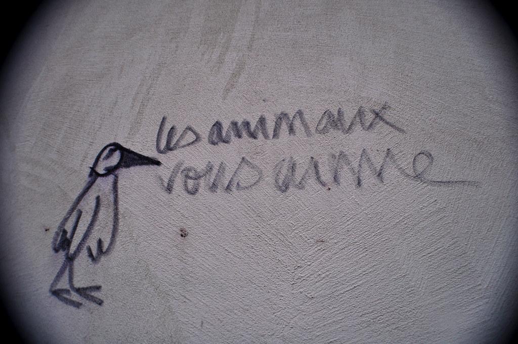 Les Animaux Vous Aime